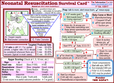 Alt = Quick reference and rev, Apgar scoring, and chart for monitoring SpO2 levels on a pocket sized, laminated card